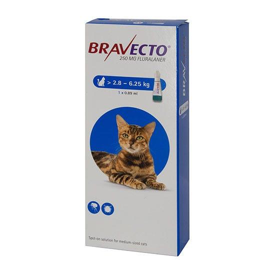 Bravecto Flea Treatment For Medium Cats Shop Now At Pet Drugs Online