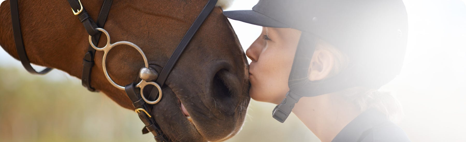 Equine stress and anxiety