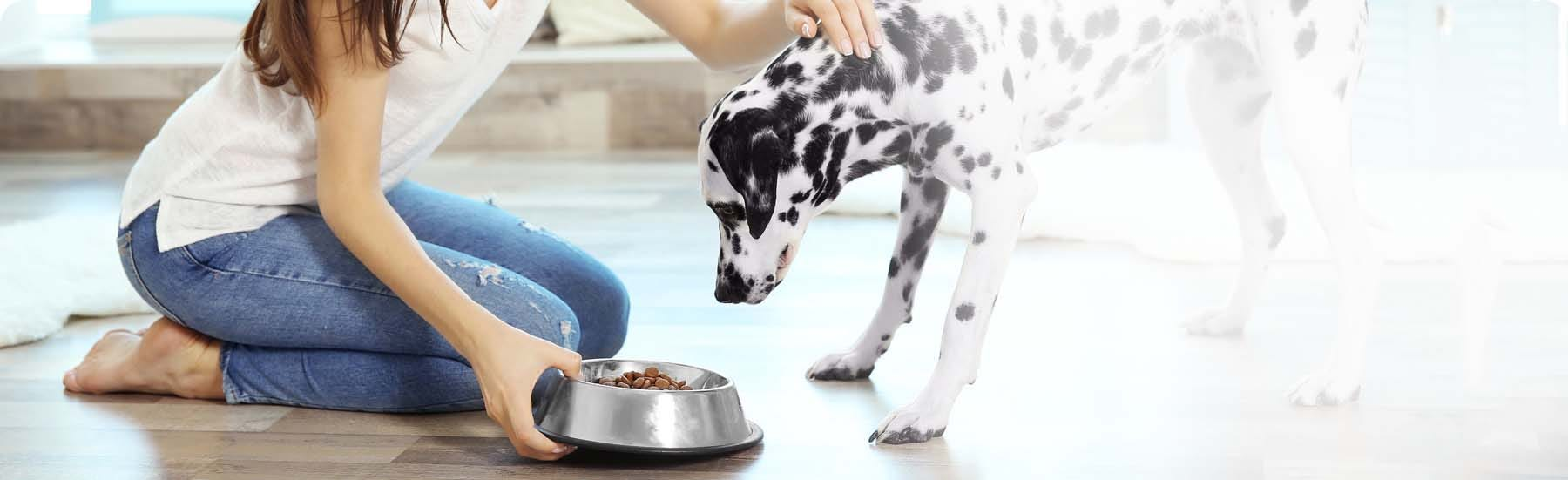 Providing highly tailored nutritional foods for dogs and cats, the Royal Canin range includes Vetcare Nutrition, Veterinary Diet and Breed Health.