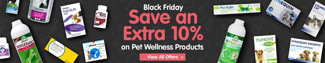 View our Black Friday Dog Offers!