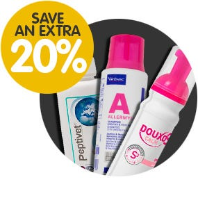 20% Off Dog Grooming