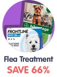 Cat & Dog Fleas