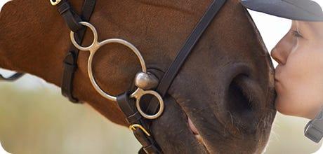 Horse Coat & Allergy