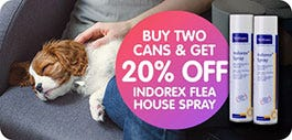 Indorex Offer